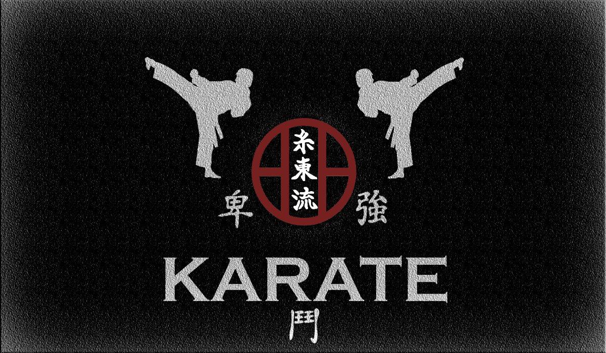 Karate-do Shito Ryu